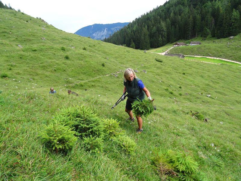 berchtesgadener land ramsau bergsteigerdorf