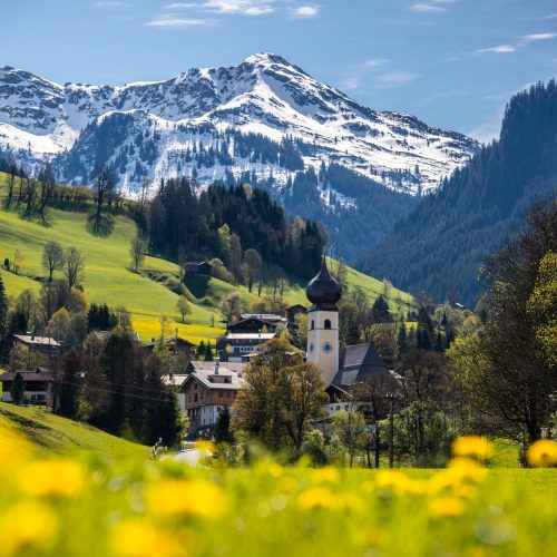 Sommer Ort Aurach mit Bergen und Blumenwiese