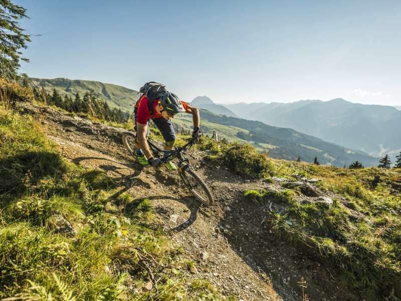 Radfahrer Katbike Saison Fahrrad Mountainbike Kitzbüheler Alpen