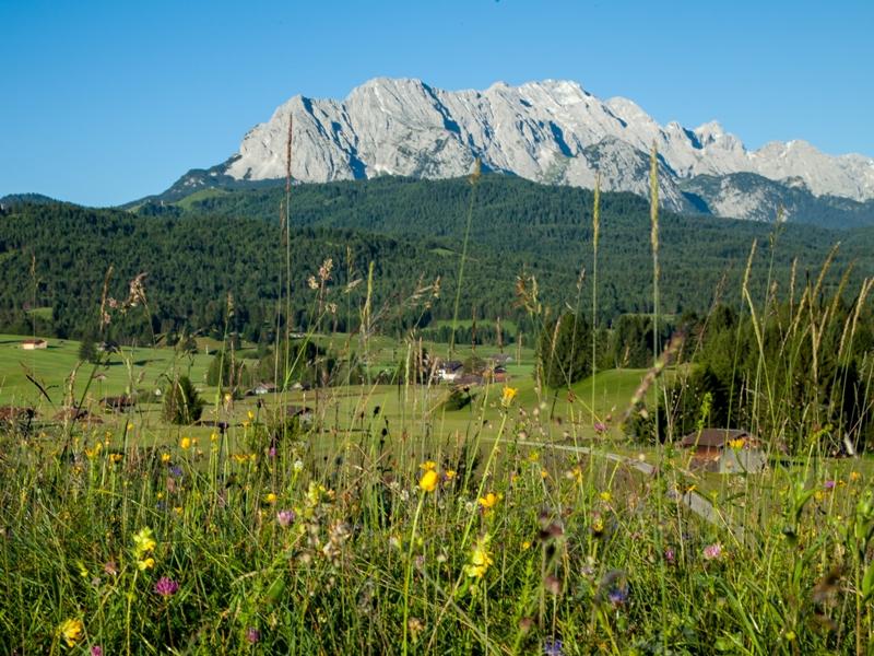 Zugspitz Region, Karwendelgebirge, blühende Wiesen