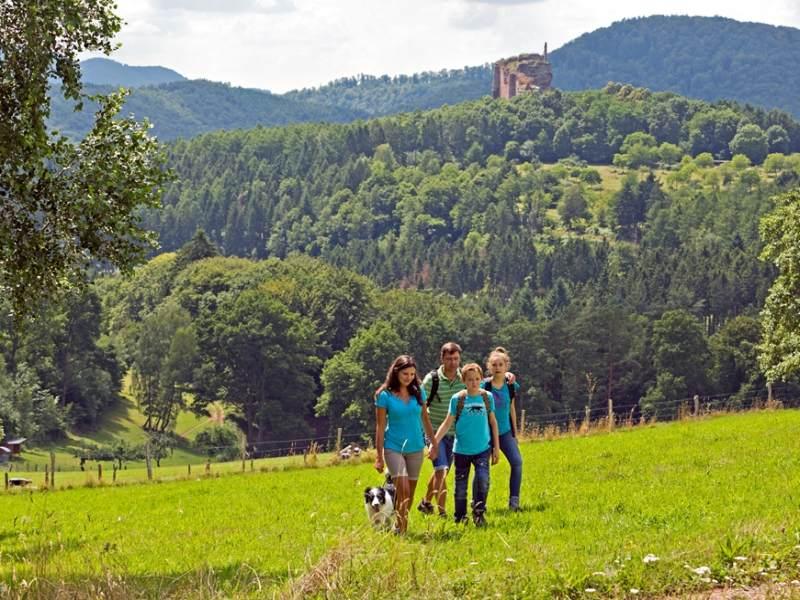 Wandern Familie Hund Pfälzerwald Nordvogesen Wanderarena Südwest Pfalz
