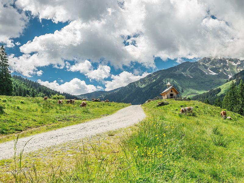 Wildschönau E-Bike and Hike Radfahren Wandern Berge Ausflug Sommer Frühling Schönangeralm