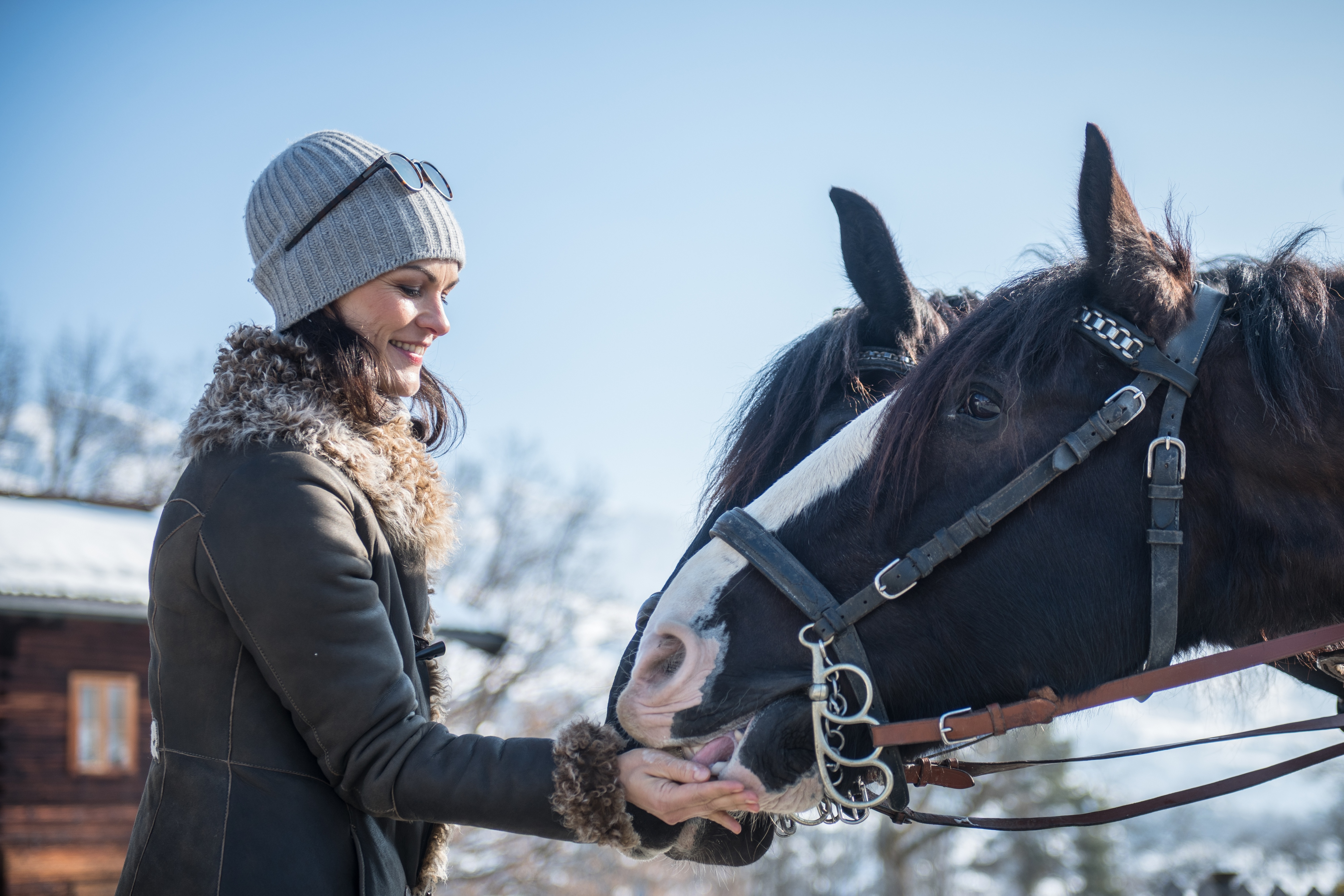 Frau füttert streichelt Pferde Kutsche Kitzbühel Winter