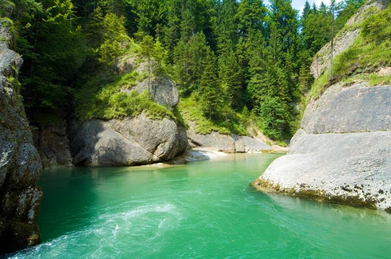 Fluss, Wald, Nadelbäume, türkis, Felsen