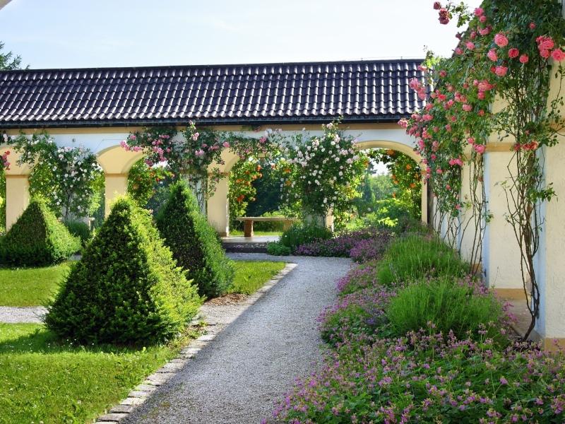 Busch, Garten, gepflegt, Rosen, Natur, Höhenried