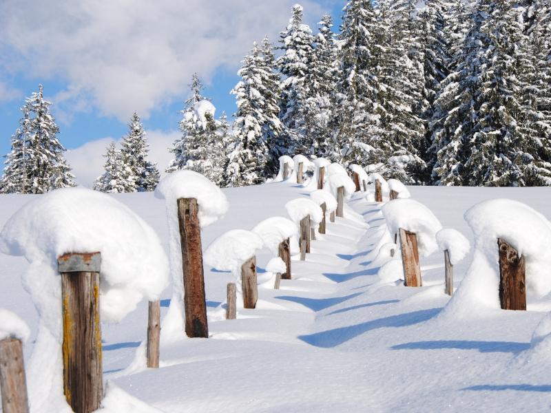 verschneite Wege im Pillersee Tal