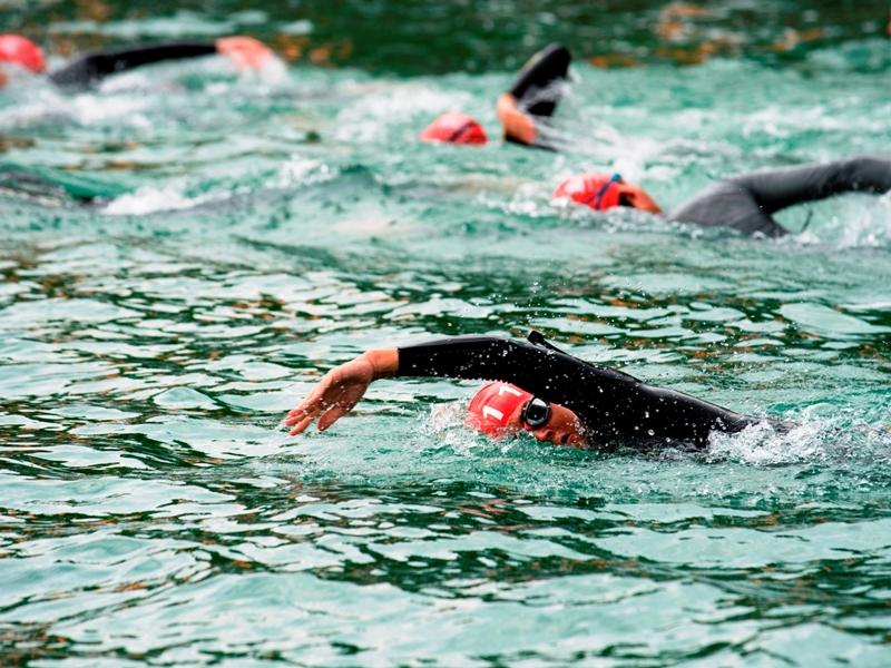 Schwimmer im Starnberger See
