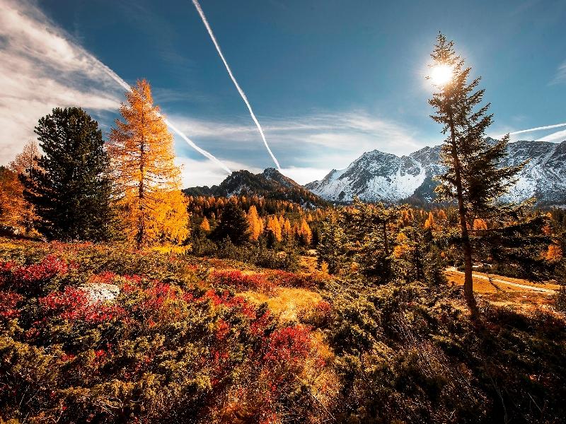 Herbst Berge Wald Altenmarkt Zauchensee Genuss