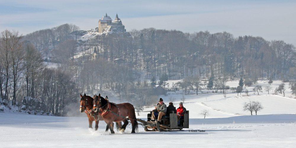 Nürnberger Land Schlittenfahrt Pferde Gäste