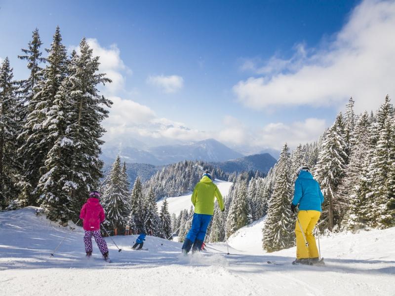 Langgries Skifahrer Abfahrt