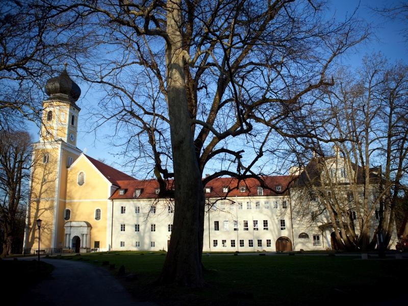 Kloster Bernried Baum Herbst