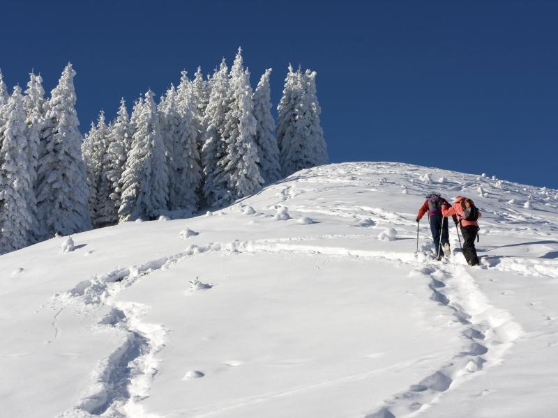 Spuren im Neuschnee 2 Schneeschuhwanderer