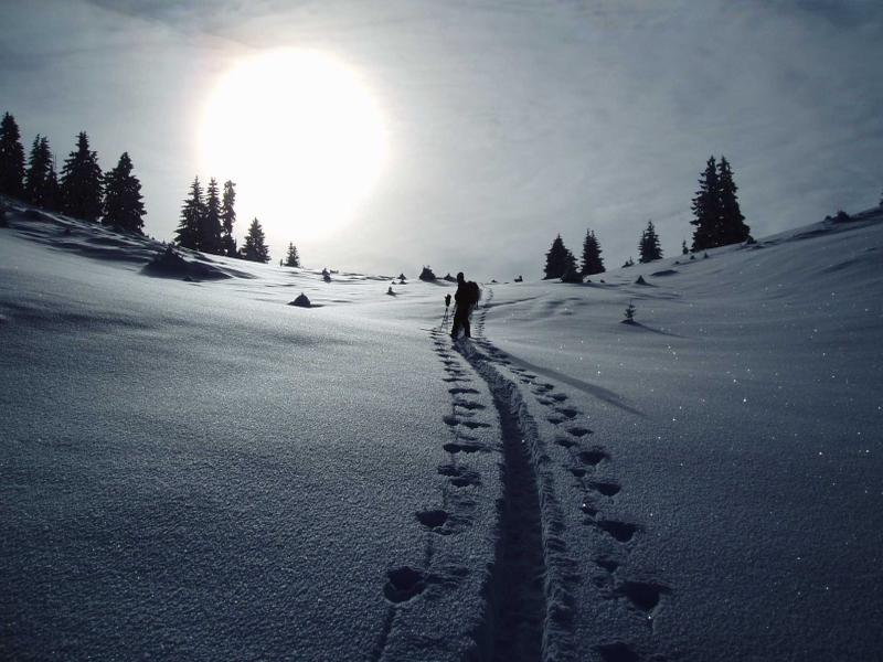 Skitourengeher im Schnee Sonnenschein