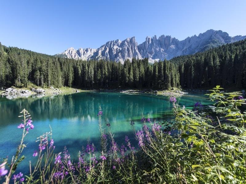 Karer See mit Wald und Bergmaßiv im Hintergrund