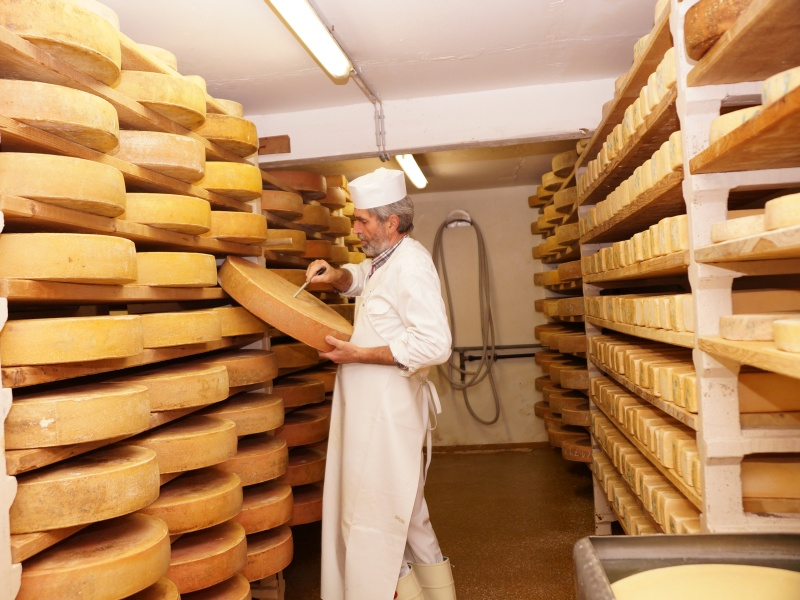 Käselager mit Käser bei der Stichprobe