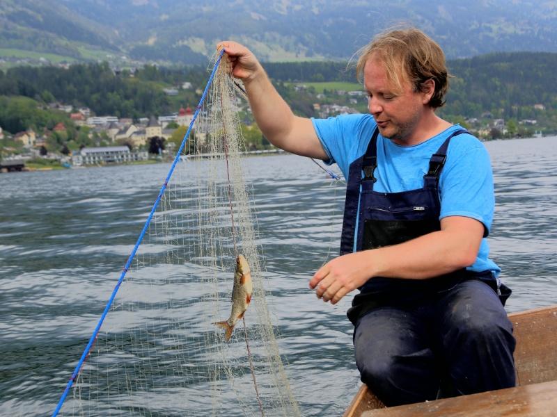 Peter Sichrowsky Fischernetz mit Fisch auf Millstätter See