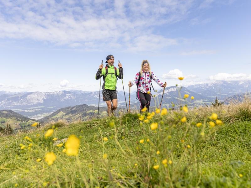 2 Wanderer Almwiese Blumen