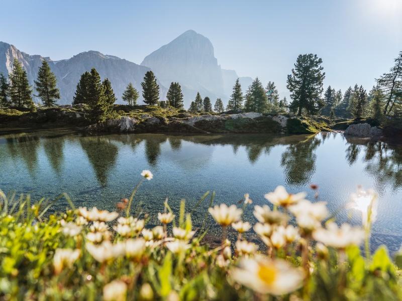Lago Limedes Bergsee Dolomiten