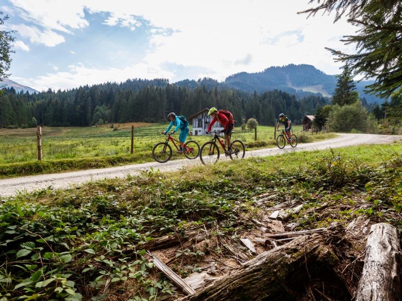 3 Radfahrer auf Feldweg