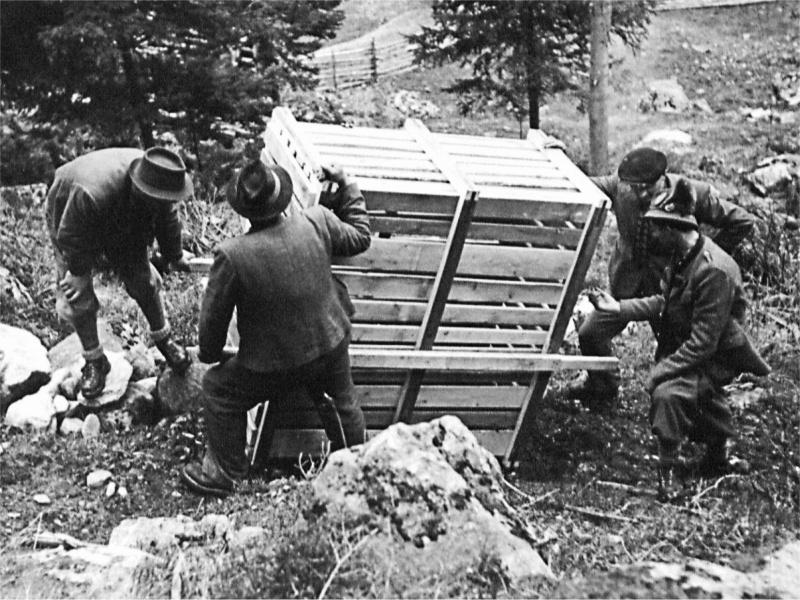 Transportkiste Steinbock 4 Männer