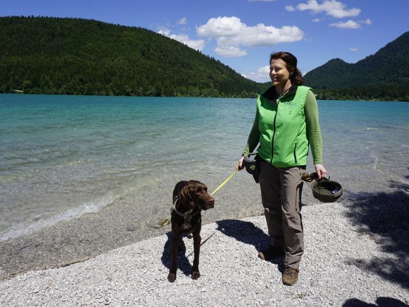 Walchensee Rangerin mit Hund am Ufer
