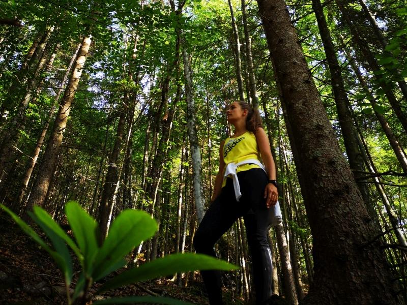 Waldbaden eine Frau im Wald