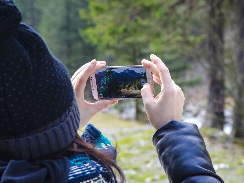 blick aufs Handy Foto von Wald