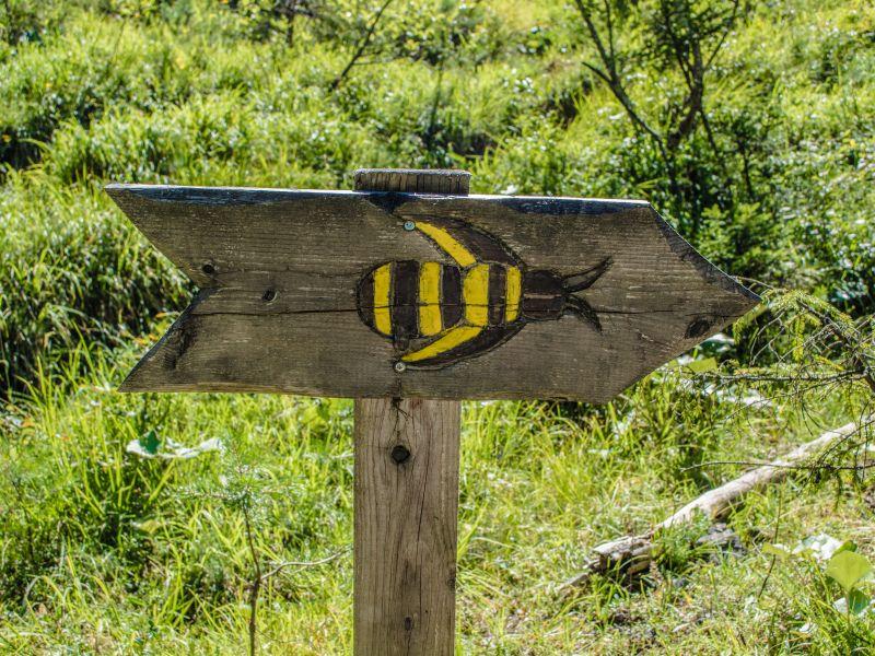 Wegweiser Bienenlehrpfad st. Ulrich am Pillersee