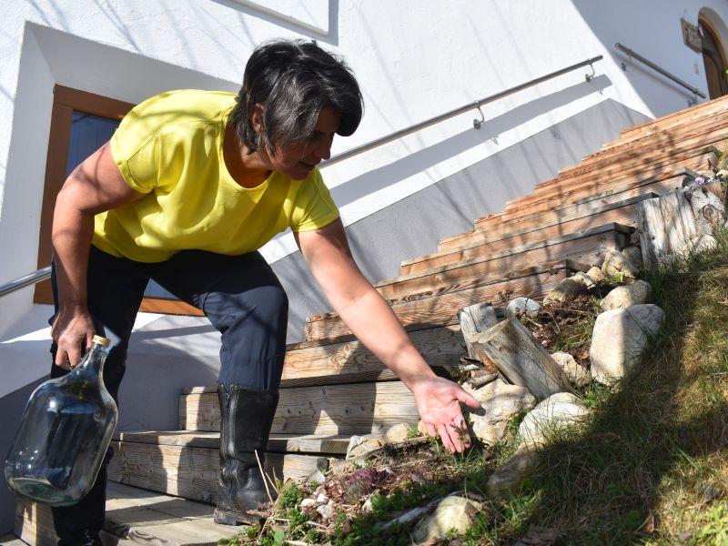Frau sammelt Kräuter