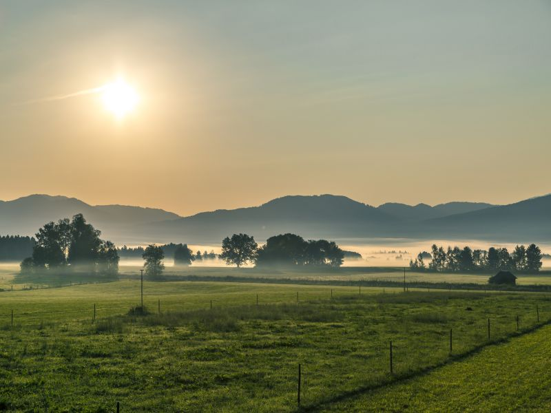 Moor Kochel Nebel Sonnenaufgang