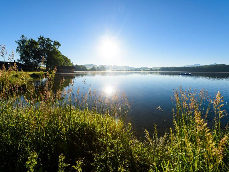 Riegsee Ufer